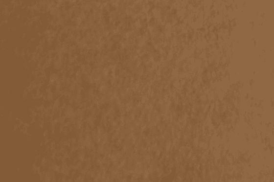 BIOTOPE GA-FS Brun terre 52 g/m²