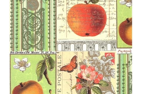 A4 Rossi1931© - Pommes et nature