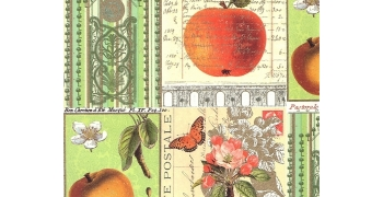 Pommes et nature