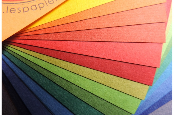 SHIN INBE 15 coloris Awagami 65g/m2
