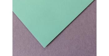 Feuille Maya vert turquoise 120g