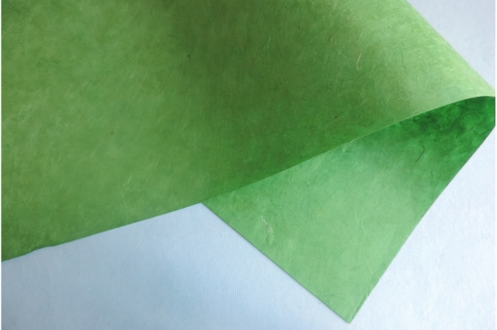 Papier Lokta Chlorophylle