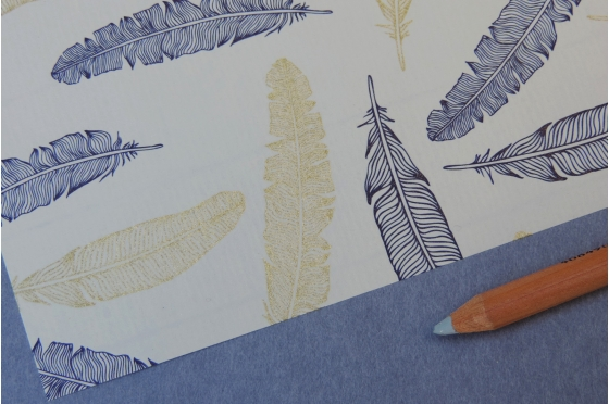 Papier décoratif Rossi1931© - Plumes