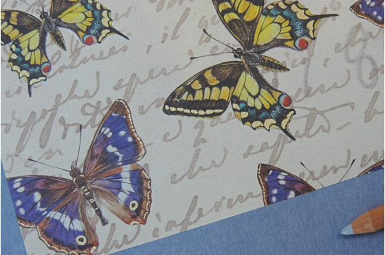 Papier décoratif Rossi1931© - Botanic & Butterflies