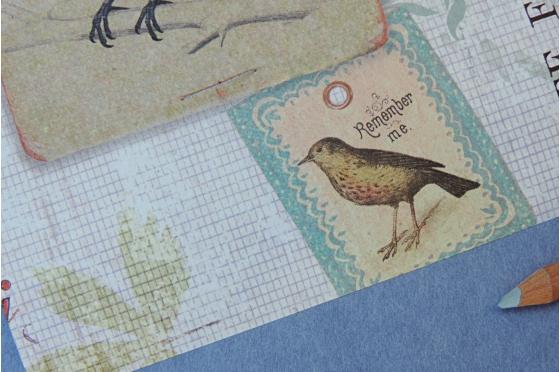 A4 Papier decoratif  Printemps et oiseaux