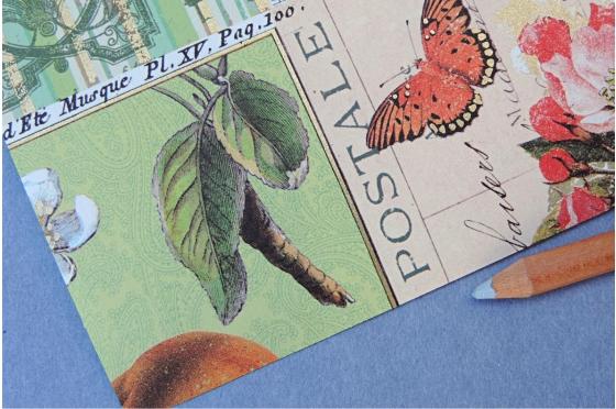 A4 Papier florentin - Pommes et nature