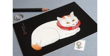 Chat au collier rouge