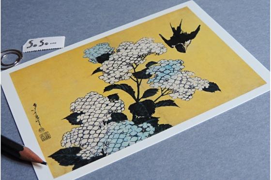 Hortensia Hokusai.
