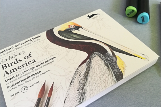 Bloc cartes postales prédessinées Pepin® pour artiste