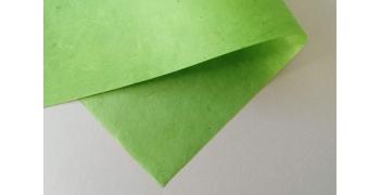 Papier Lokta Anis