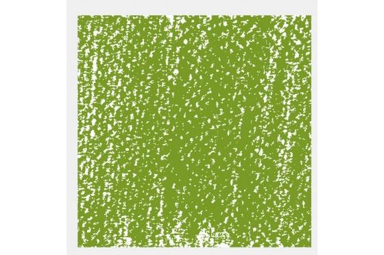 Pastel Tendre Rembrandt® Vert cinabre clair