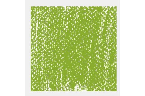 Pastel Tendre Rembrandt® Vert jaune permanent
