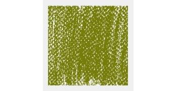 Pastel Tendre Rembrandt® Vert olive